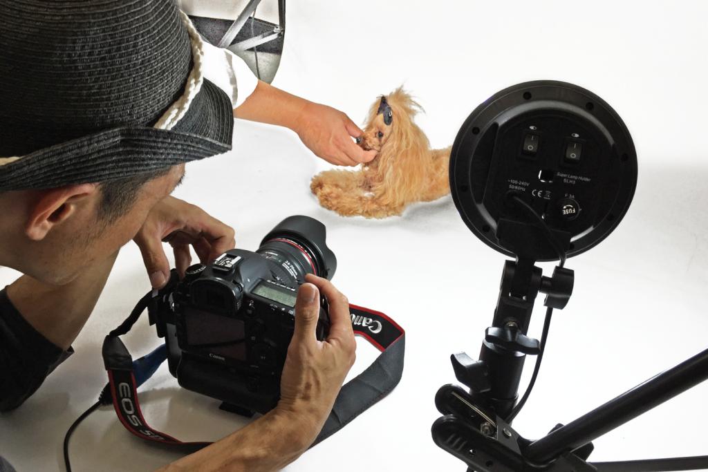 プロカメラマンによる写真撮影承っております